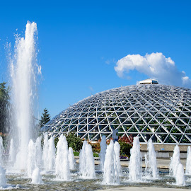 Bloedel Conservatory in Vancouver by Judy Rosanno - Buildings & Architecture Architectural Detail ( structure, conservatory, canada, fountains, architecture, vancouver,  )