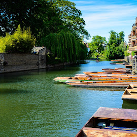 The River Cam by Amy Matthes Okasinski - City,  Street & Park  Vistas ( england, vacation, cambridge, river,  )