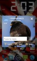 Screenshot of Go SMS Pro Angry BirdsR theme