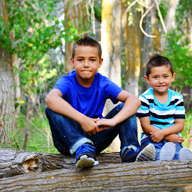Brothers. by Kallie Snyder - Babies & Children Children Candids ( idaho, trees, summer, kids, brothers,  )