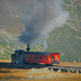 Up The Side Of The Mountain. by Roy Walter - Transportation Trains ( steam locomotive, mountain, transportation, cog train, trains )