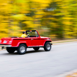Fall Drive Away by Uday Arunachalam - City,  Street & Park  City Parks ( #fallcolors, #driveaway, #yellow, #panning, #drive, fall, color, colorful, nature )