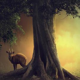 Instinct by Hendra YM - Digital Art Animals ( bogor, dreamy, atmotsfer, digital art, rusa, animal )
