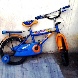 Colorful Bicycle by Anjela Mukherjee - Transportation Bicycles ( cycle, color, transport, photography, bicycle )