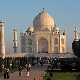 Morning Taj by Srivenkata Subramanian - Buildings & Architecture Statues & Monuments ( love symbol, taj mahal, agra, wonder of the world, india, beauty, white marble,  )