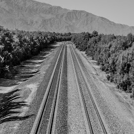 The Tracks by Danielle Benbeneck - Transportation Railway Tracks ( mountain, black and white, train, tracks, transportation, landscape )