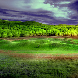 Green Waves by Rahul Phutane - City,  Street & Park  City Parks ( rahulphutane, storm king art center, waves,  )