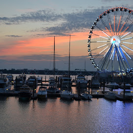 National Harbor Ferris Wheel by Jody Williams - Buildings & Architecture Other Exteriors ( water, sunset, national harbor, night, ferris wheel )