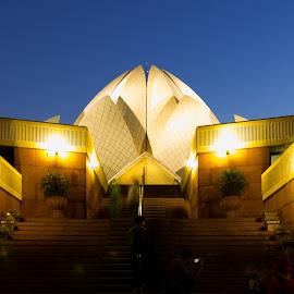Lotus Temple by Avanish Dureha - Buildings & Architecture Places of Worship ( lotus temple, new delhi, dureha@gmail.com, avanish dureha, bahai temple )