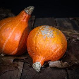 two pumpkins by Dimitri Haeck - Food & Drink Fruits & Vegetables ( orange, bladeren, wood, pumpkin, pumpkins, hout, leaves, oranje, two, twee, leave, autumn, brown, bruin, herfst )