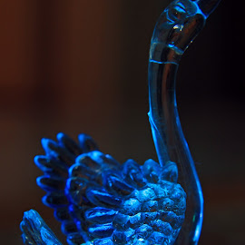 Illuminated blue swan by Srivenkata Subramanian - Artistic Objects Toys ( cupboard, toy, blue, dark, swan, india, illumination, light )