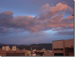 typhoon 011