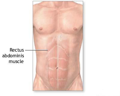 effective, ab, exercises, six pack, abs, Rajarshi, Sharma, exercise, workout, health, rajsharmablogs.blogspot.com