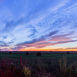 hay field sunset by Richard Turner - Landscapes Sunsets & Sunrises ( farm, field, sunset, hay, round bales, country )