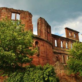 Heidelberg Castle, Germany by Sandy Darnstaedt - Uncategorized All Uncategorized (  )