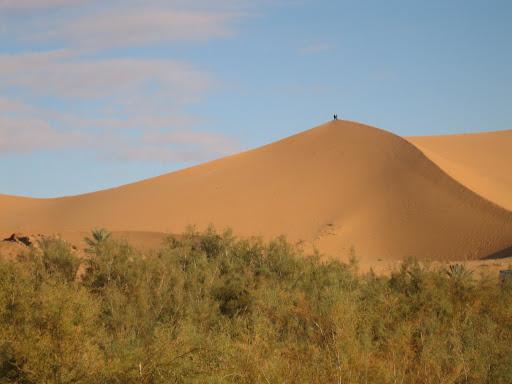 صور بني عباس بولاية بشار جنوب الجزائر Photo%20desert%20tunisie%20058