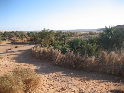 صور بني عباس بولاية بشار جنوب الجزائر Photo%20desert%20tunisie%20099