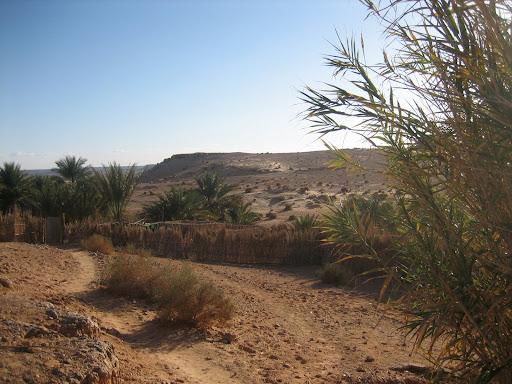 صور بني عباس بولاية بشار جنوب الجزائر Photo%20desert%20tunisie%20089