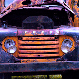 junk yard dog by David Ubach - Transportation Automobiles ( old, vintage, truck, yellow, junk yard, ford, classics, antiques )