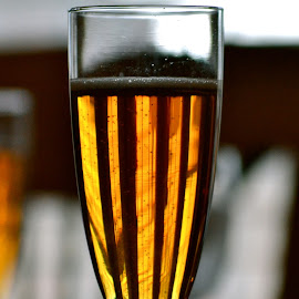 Sparkling Cider by Shay Blood - Food & Drink Alcohol & Drinks ( cider, family, glass, thanksgiving, drinks )