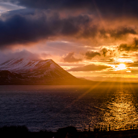 Winter Sun by Craig Fraser - Landscapes Sunsets & Sunrises (  )