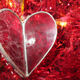 Frosty Red Heart on a Red Christmas Tree by Marcia Taylor - Novices Only Objects & Still Life (  )