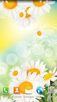 Screenshot of Daisies Live Wallpaper