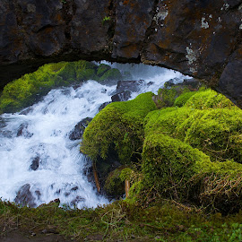 Wahkeena Falls by Elizabeth Johnson - Landscapes Waterscapes ( oregon, nature, green, wahkeena, waterfall )