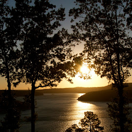 Lake sunset by Zeralda La Grange - Nature Up Close Trees & Bushes ( #landscape, #lake, #arkansas, #nature, #sunset, #sun, #water )