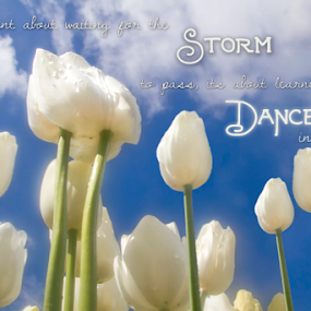 Dance by Bevlea Ross - Typography Captioned Photos