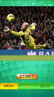 Screenshot of goalkeeper football game