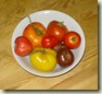 tomatoes many colours_1