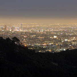 Twinkle Twinkle All You Stars by Dean Mayo - City,  Street & Park  Skylines ( los angeles, griffith odservatory, night, cityscape, dean mayo )