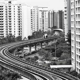 Light Rail System by Koh Chip Whye - Transportation Trains (  )