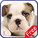 Bulldog+ Free icon