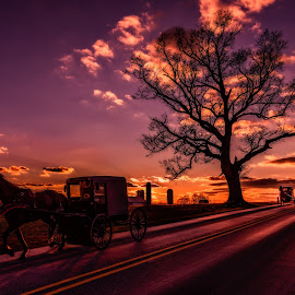 Ride Captain Ride by Linda Karlin - Landscapes Sunsets & Sunrises ( nature, sunset, transportation, landscape )