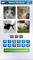Screenshot of 4 Pics 1 Word
