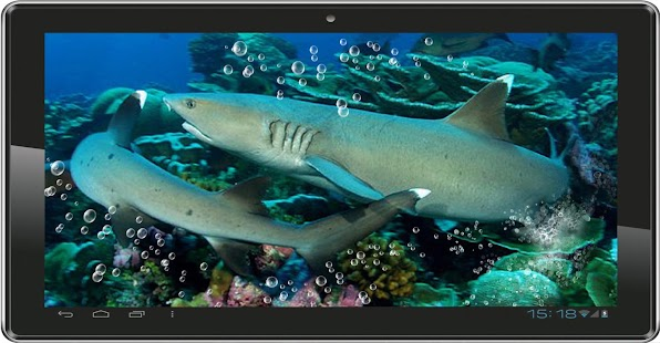 Sharks Coral Reef HQ LWP - screenshot