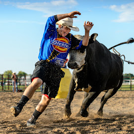 If You Mess With the Bull... by Jimmy Rash - Sports & Fitness Rodeo/Bull Riding ( clown, 2014, rodeo clown, grand island, rodeo, state fair, nebraska, fair, nebraska state fair, nebraska high school rodeo )