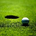 Golf Pro 3D icon