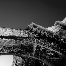 Dark Eiffel Tower by Greg Brzezicki - Buildings & Architecture Public & Historical ( paris, tower, b&w, eiffel, monument,  )