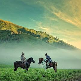 Morning Conversation by Dimas Pamungkas - Landscapes Prairies, Meadows & Fields