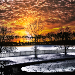 There's a chill in the air. by Doreen Rutherford - City,  Street & Park  Neighborhoods