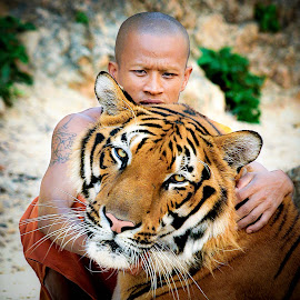 Man and tiger by David Monjou - People Portraits of Men ( person, tiger, portrait, man, animal )