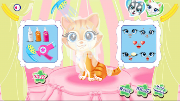 Screenshot of Pets Beauty Salon