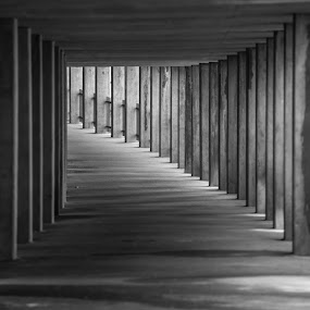 Mosier Tunnel by Gary Piazza - Black & White Buildings & Architecture ( oregon, mosier, black and white, tunnels,  )