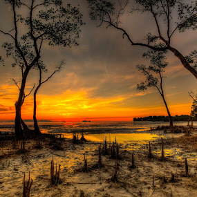 Color Dreams #4 by NC Wong - Landscapes Sunsets & Sunrises ( shore, water, clouds, sand, warm, santubong, kuching, sea, rock, ocean, seascape, beach, coastal, mangrove, sun, swamp forest, sky, sunset, swamps, golden hour )