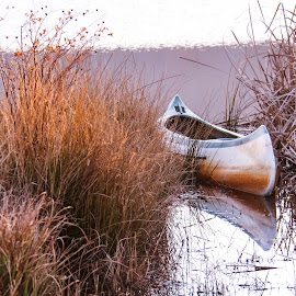 Frozen in time by Tracy-Leigh Mc Donald - Transportation Boats ( transport, sunset, canoe, lake, boat, frozen, reeds,  )
