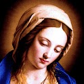 Virgin Mary LWP Full icon