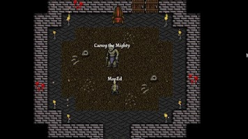 Screenshot of 9th Dawn RPG Free Demo